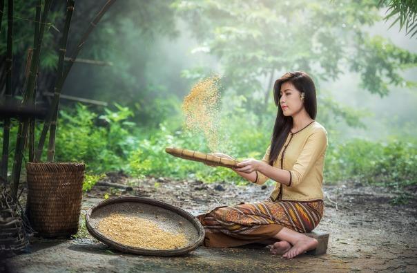 rice-1807554_1920.jpg